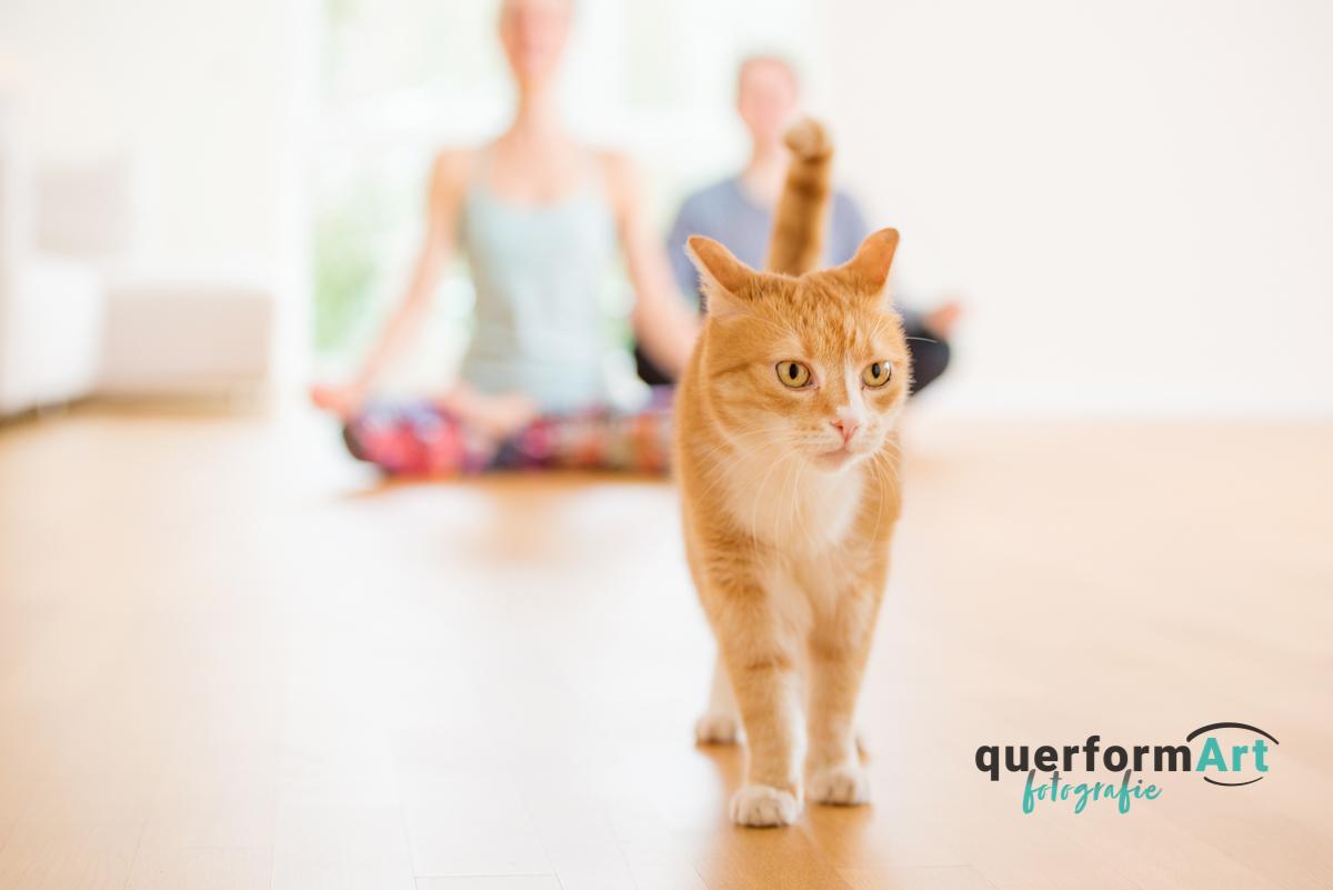 Yogafotoshooting Oberursel